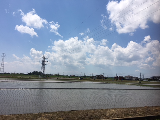 IMG_2789.JPGのサムネイル画像