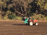 収穫後 の 畑